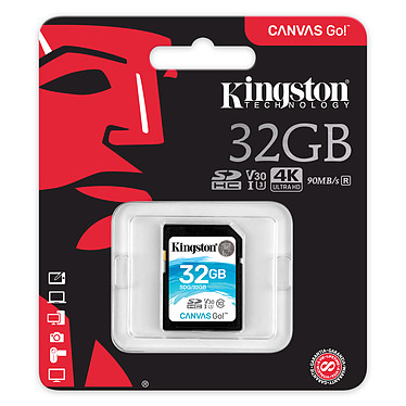 Avis Kingston Canvas Go! SDG/32GB