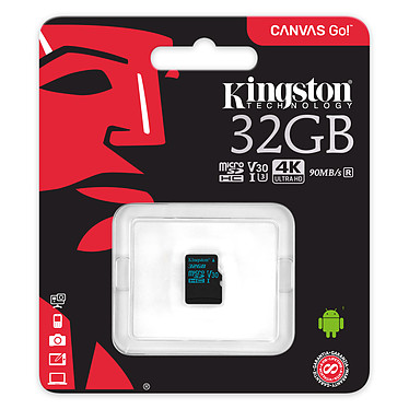 Avis Kingston Canvas Go! SDCG2/32GBSP