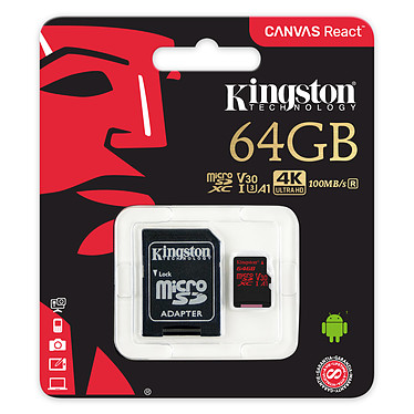 Avis Kingston Canvas React SDCR/64GB