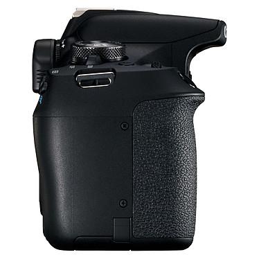 Avis Canon EOS 2000D