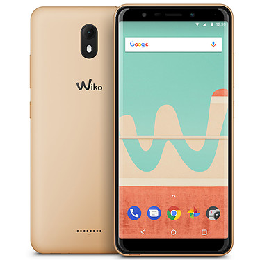 Wiko View Go 16 Go Or
