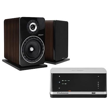 Cabasse Stream AMP 100 + Elipson Prestige Facet 8B Noyer