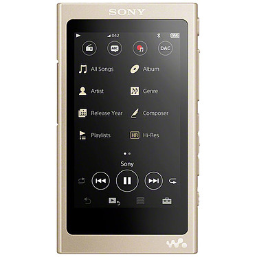 Sony NW-A45 Or Clair Lecteur MP3 High-Res Audio 16 Go avec écran tactile 7.8 cm Bluetooth NFC FM et USB