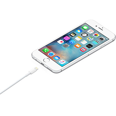 Comprar Apple cable Lightning vers USB - 1 m