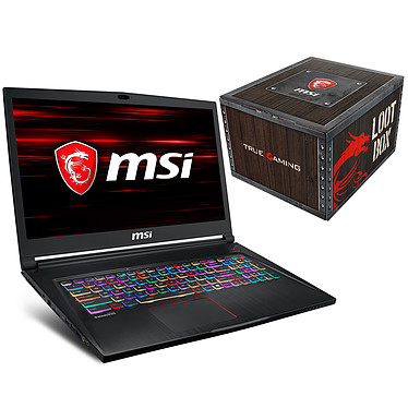 "MSI GS73 8RE-002FR Stealth + MSI Loot Box - Level 2 OFFERTE ! Intel Core i7-8750H 8 Go SSD 256 Go + HDD 1 To 17.3"" LED Full HD 120 Hz NVIDIA GeForce GTX 1060 6 Go Wi-Fi AC/Bluetooth Webcam Windows 10 Famille 64 bits (garantie constructeur 2 ans)"