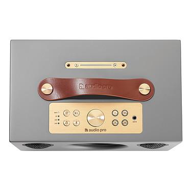 Avis Audio Pro Addon C5A Gris