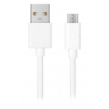 USB StarTech.com