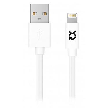 Câble USB xqisit