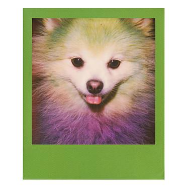 Avis Polaroid Color 600 Film (cadres colorés)