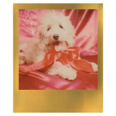 Avis Polaroid Color 600 Film (cadre or)