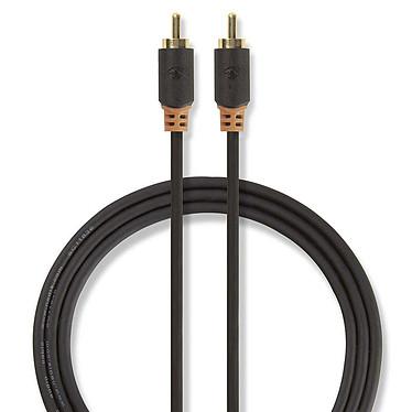 Nedis Câble Audio Numérique RCA - 1m