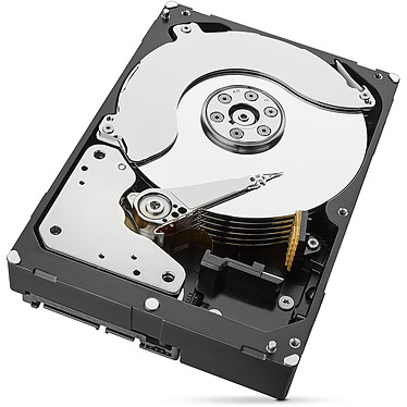 Avis Seagate Exos 7E8 3.5 HDD  8 To (ST8000NM0115)