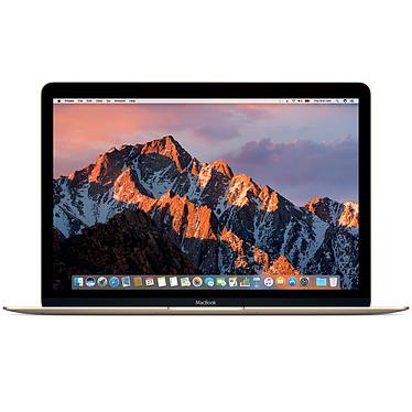 """Apple MacBook 12"""" Or (MRQN2FN/A) Intel Core m3 (1.1 GHz) 8 Go SSD 256 Go 12"""" LED Wi-Fi AC/Bluetooth Webcam Mac OS X Mojave"""