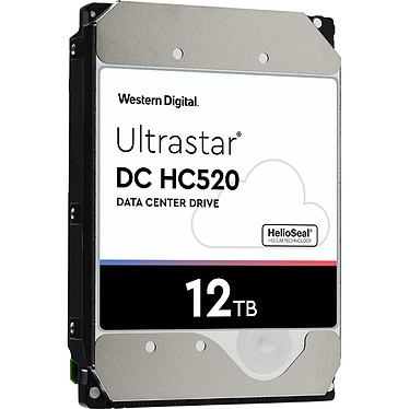 Avis Western Digital Ultrastar DC HC520 12 To (0F29531)