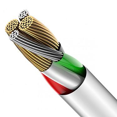 Opiniones sobre Baseus Big Eye Digital Lightning Cable Blanco - 1.2 m