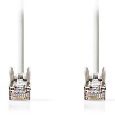 Câble RJ45