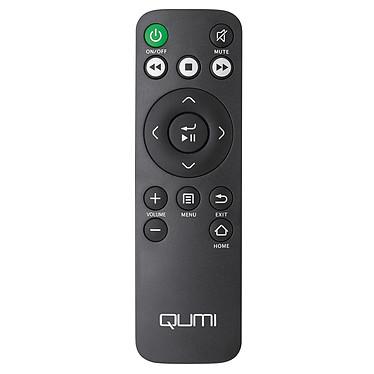 Vivitek Remote Control Q8