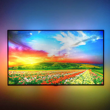 """Avis DreamScreen 4K Kit (70""""/177 cm)"""