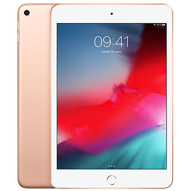 Apple iPad mini 5 Wi-Fi 64 Go Or