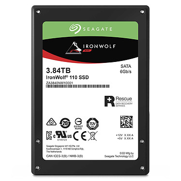 Acheter Seagate SSD IronWolf 110 3.84 To