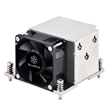 SilverStone Xenon XE02-2011 Ventirad pour processeur serveur (pour Socket Intel 2011/2011-3/2066)