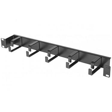 Dexlan guide-câbles pour armoire réseau - longueur 19'' - hauteur 1U - plein - décaissé de 5 cm Guide-câbles pour armoire réseau - longueur 19'' - hauteur 1U - plein - décaissé de 5 cm
