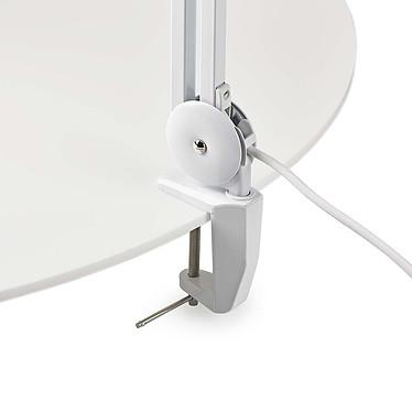 Avis Nedis Magnifier Desk Lamp