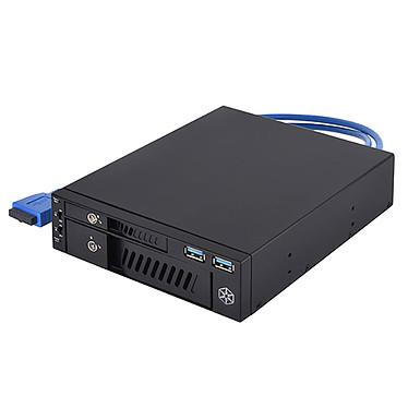 """SilverStone FP510 Boîtier interne pour 1 disque dur SSD 3.5"""" et 1 disque dur SSD 2.5"""" dans 1 baie 5.25"""""""