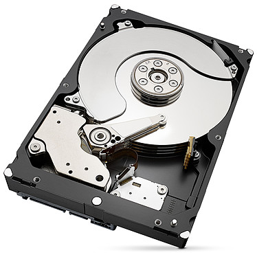 Seagate IronWolf Pro 6 To (ST6000NE0023) pas cher