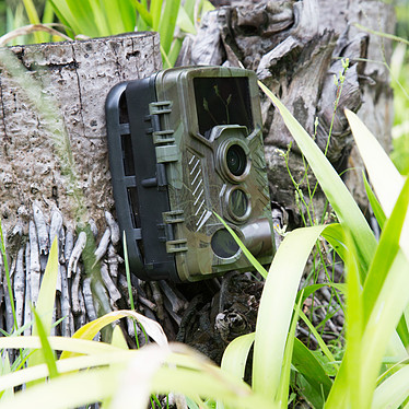 Acheter Technaxx Nature Wild TX-125