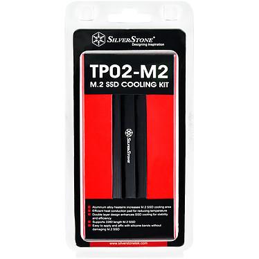 Acheter SilverStone TP02-M2