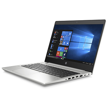 Avis HP ProBook 445 G6 (6MQ65EA)