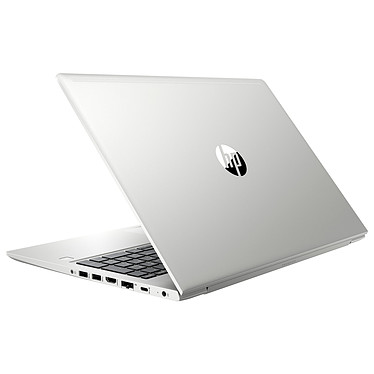 HP ProBook 455 G6 (6MQ66EA) pas cher
