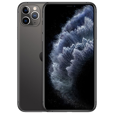 "Apple iPhone 11 Pro Max 64 Go Gris Sidéral Smartphone 4G-LTE Advanced IP68 Dual SIM - Apple A13 Bionic Hexa-Core - RAM 6 Go - Ecran 6.5"" 1242 x 2688 - 64 Go - NFC/Bluetooth 5.0 - iOS 13"