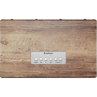 Avis Audio Pro BT5 Driftwood