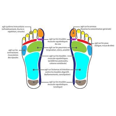 Avis Unilux Roller Feet