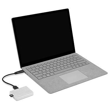 Acheter Seagate One Touch SSD 500 Go Blanc