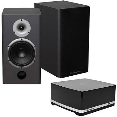 Cabasse Stream AMP 100 + Antigua MT22 Noir Satin Amplificateur haute fidélité 2 x 50 W RMS avec Wi-Fi / Ethernet / NFC + Enceinte bibliothèque 75W (par paire)