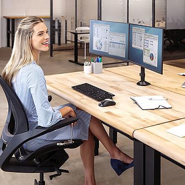 Acheter Fellowes Bras porte écran double Reflex