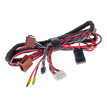 Focal IMP Extension I/O 150 Câble d'adaptation pour amplificateur IMPULSE 4.320 - 1m50