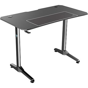 Avis REKT R-Desk 110