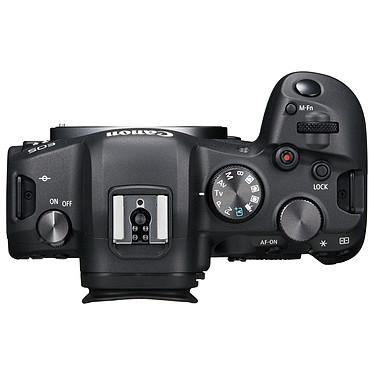 Avis Canon EOS R6 + RF 24-105mm f/4-7.1 IS STM