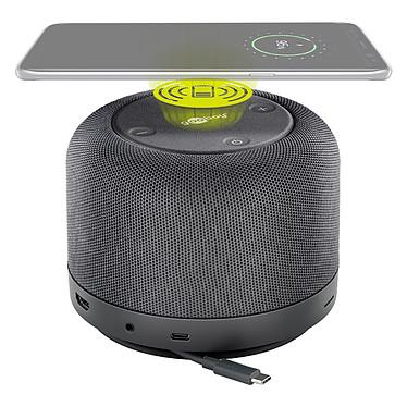 Acheter Goobay USB-C Premium Dock avec haut-parleur multimédia