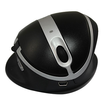 Oyster Wireless Mouse Large