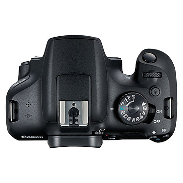 Opiniones sobre Canon EOS 2000D + 18-135 IS STM