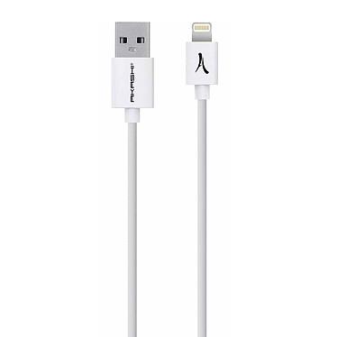 Avis Akashi Câble USB-A vers Lightning MFI (Blanc)