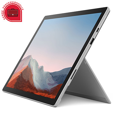 Microsoft Surface Pro 7+ for Business - Platine (1N9-00003)