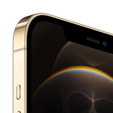 Avis Apple iPhone 12 Pro Max 256 Go Or