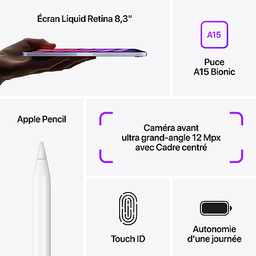 Acheter Apple iPad mini (2021) 64 Go Wi-Fi Gris Sidéral