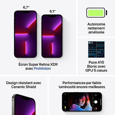 Acheter Apple iPhone 13 Pro Max 128 Go Graphite